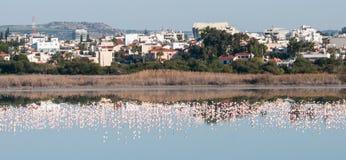 Panoramic view of the city of Larnaca, CYPRUS Stock Image