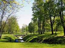 Spring City park with flowering trees and flowers royalty free stock photo