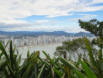 Panoramic view of city by the sea, in sunny day. With forest in the foreground Stock Images