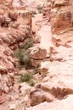 Mountain path to the Monastery, ancient city of Petra, Jordan Royalty Free Stock Photography