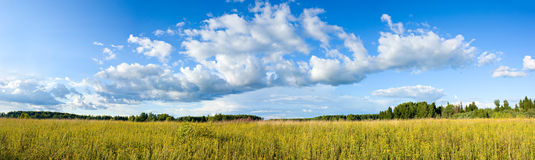 Panoramic view of clouds and meadow Royalty Free Stock Images