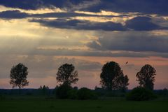Panoramic view of colorful sunset over wetlands and meadows by the Biebrza river in Poland Stock Photo