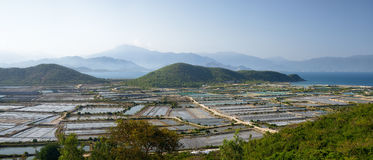 Panoramic view of the countryside in central Vietnam. Stock Photos