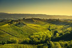 Panoramic view of countryside and chianti vineyards from San Gimignano. Tuscany, Italy. Panoramic view of countryside and chianti vernaccia vineyards from San stock photos