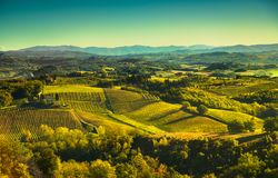 Panoramic view of countryside and chianti vineyards from San Gim. Panoramic view of countryside and chianti vernaccia vineyards from San Gimignano on sunrise Stock Image