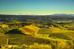 Panoramic view of countryside and chianti vineyards from San Gim. Panoramic view of countryside and chianti vernaccia vineyards from San Gimignano at sunrise Royalty Free Stock Photos