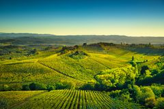 Panoramic view of countryside and chianti vineyards from San Gim. Panoramic view of countryside and chianti vernaccia vineyards from San Gimignano on sunrise Stock Photo