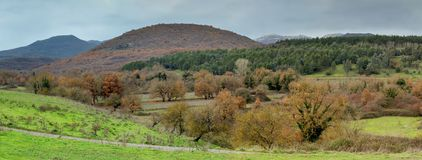 Mountain landscape. Autumn forest. royalty free stock images
