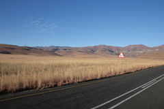 Panoramic View of Countryside in Orange Free State Royalty Free Stock Photos