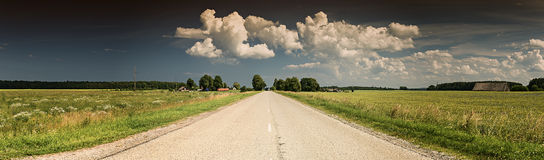 Panoramic view with countryside road and field of cereals Stock Image