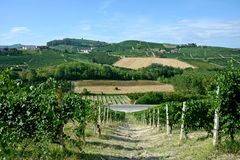 Panoramic view of countryside with vineyard, cultivated fields. On the hills and a blue sky stock photography