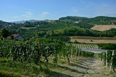 Panoramic view of countryside with vineyard, cultivated fields. On the hills and a blue sky stock image