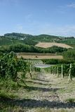 Panoramic view of countryside with vineyard, cultivated fields. On the hills and a blue sky royalty free stock images
