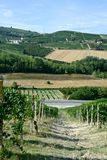 Panoramic view of countryside with vineyard, cultivated fields. On the hills and a blue sky stock images