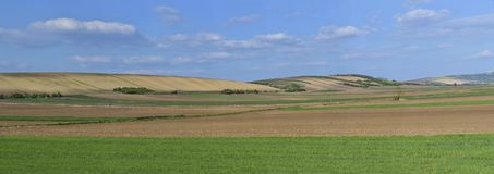 Panoramic view of cultivated  farmland with sky. 