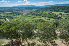 Panoramic view of the cultivated and green landscape of Provence Stock Images