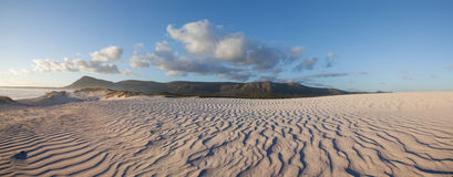 Panoramic view of desert Stock Photo