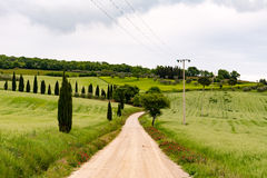 Panoramic view of the a dirt road in Val d'Orcia. Pienza stock image