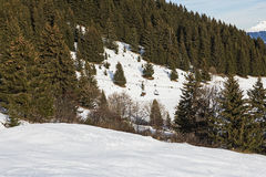 Panoramic view down an alpine mountain valley Royalty Free Stock Photo