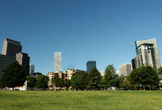 Panoramic View of Downtown Denver. From city park in summer royalty free stock image