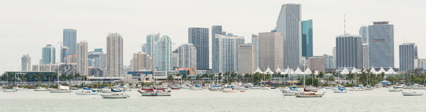 Panoramic view of downtown Miami Royalty Free Stock Photos