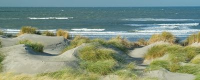 Panoramic view with dunes, beach and North Sea waves. In Westland, The Netherlands stock images