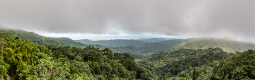 Panoramic view of the El Yunque rainforest Royalty Free Stock Photo