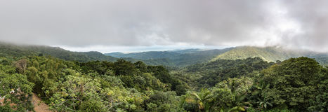 Panoramic view of the El Yunque rainforest. With a storm hovering over the mountains Royalty Free Stock Photos