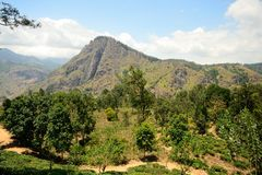 Panoramic view of Ella Rock, Sri Lanka Stock Image