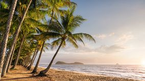 Panoramic view of an empty tropical beach royalty free stock images