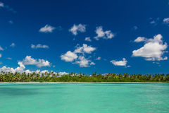 Panoramic view of Exotic Palm trees and lagoon on the tropical Island beach.  Royalty Free Stock Photo