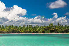 Panoramic view of Exotic Palm trees and lagoon on the tropical Island beach.  Royalty Free Stock Image