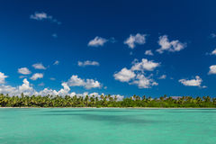 Panoramic view of Exotic Palm trees and lagoon on the tropical Island beach.  Royalty Free Stock Photos