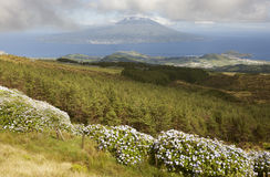 Panoramic view from Faial caldeira. Pico island in Azores archip Royalty Free Stock Images