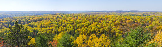 Panoramic View of Fall Colors in Algonquin Park Royalty Free Stock Image