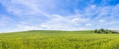 Panoramic view of farmland day Royalty Free Stock Photo
