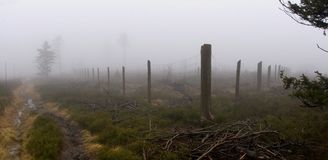 Panoramic View of Fenced Park in Forest. Panoramic View of Fenced Park in Autumn Forest Landscape in Foggy Weather (Rychleby Mountains, The Czech Republic Stock Photo