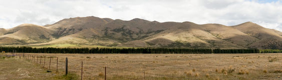 Panoramic view of field and mountain range in New Zealand.  Stock Photography