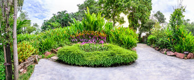 Panoramic view of flora garden with cement pathway.  Stock Image