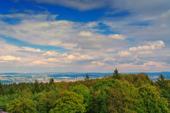 Panoramic view of forest landscape in OWL Royalty Free Stock Photos
