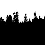 Panoramic view of the forest. Tree Silhouette Royalty Free Stock Image