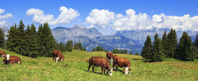 Panoramic view of french Alps Royalty Free Stock Photo