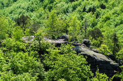 Panoramic View From The Castle Chojnik Stock Image