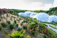Panoramic view of the geodesic biome domes at the Eden Project. The Eden Project is a visitor attraction in Cornwall, England royalty free stock image