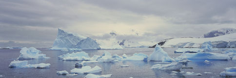 Panoramic view of glaciers and icebergs in Paradise Harbor, Antarctica Stock Image