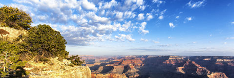 Panoramic view of Grand Canyon at sunrise Stock Photos