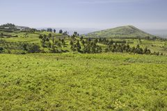 Panoramic view of Great Rift Valley in spring after much rainfall, Kenya, Africa Royalty Free Stock Image
