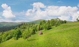 Panoramic view on green grass hills with haystack under white clouds. Beautiful rural landscape Stock Photography