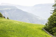 Green meadow in the mountains of Alto Adige. Panoramic view of green meadow in the mountains of Alto adige stock image