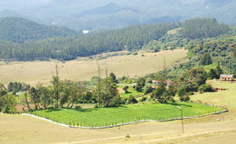 Panoramic view of green pasture. A beautiful,panoramic view of green pasture and a landscape, shot from a hill top Royalty Free Stock Image
